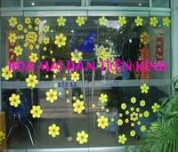 Cách dán hoa mai xốp lên cửa kính